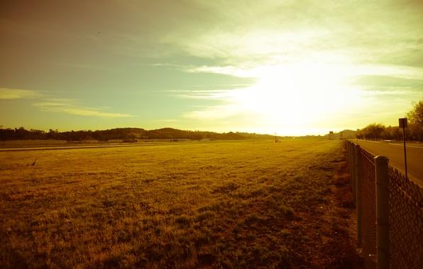 Картинка дорога, зелень, небо, трава, листья, солнце, лучи, деревья, пейзаж, природа, фон, сетка, green, widescreen, обои, …