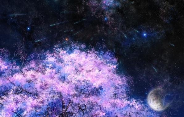Картинка космос, звезды, ночь, дерево, луна, сакура, арт, tsujiki