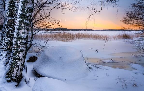 Картинка лед, зима, поле, снег, деревья, закат