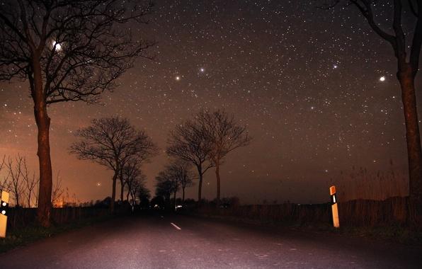 Картинка дорога, небо, деревья, луна, звёзды, Ночь, moon, road, sky, trees, night, stars
