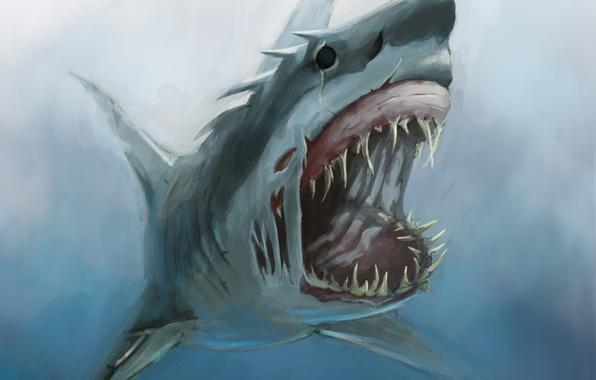 Картинка монстр, акула, арт, пасть, клыки, под водой, голод