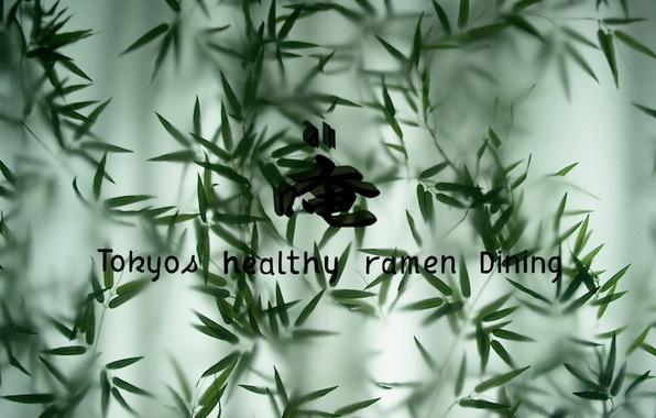 Картинка листья, зеленый, стиль, надписи