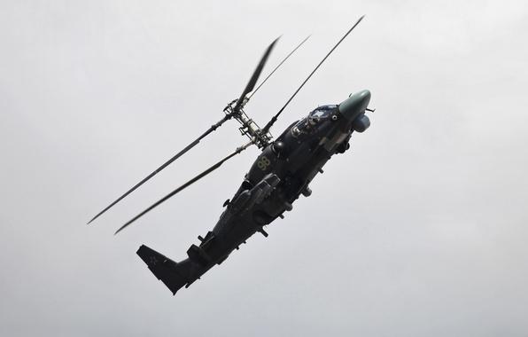 Картинка вертолет, Аллигатор, ка-52, ввс россии, Hokum B