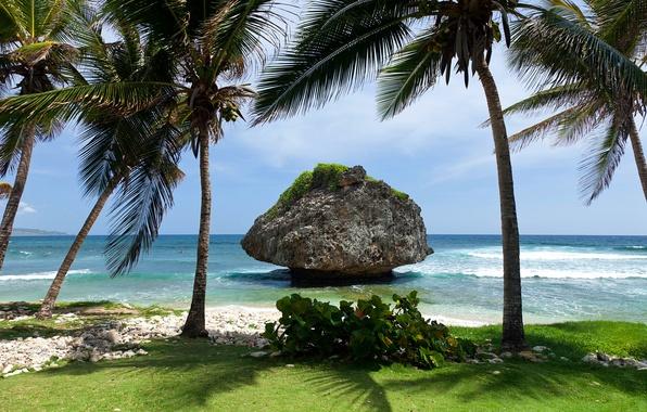 Картинка море, небо, облака, скала, тропики, пальмы, камень, остров