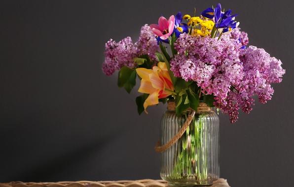 Картинка цветы, фон, банка, сирень