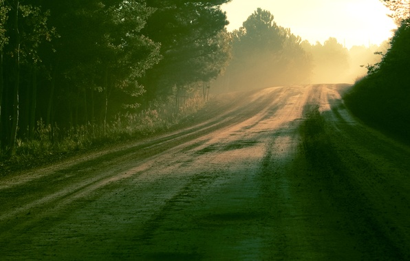 Картинка дорога, лес, солнце, свет, природа, роса, утро