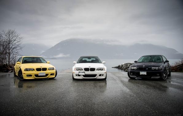 Картинка белый, отражение, жёлтый, чёрный, bmw, тень, БМВ, white, black, вид спереди, yellow, e46