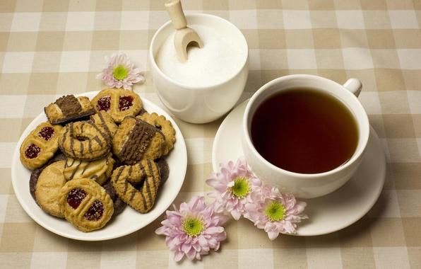 Картинка цветы, чай, печенье, чашка, сахар, блюдце
