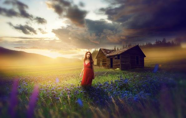 Картинка поле, девушка, цветы, платье, луг, сарай, в красном, fine art