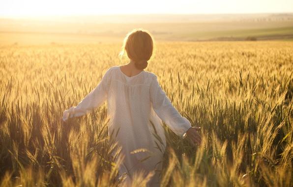 Картинка пшеница, поле, женщины, небо, свобода, девушка, счастье, желтый, одиночество, девушки, ветер, один, женщина, волосы, девочки, ...