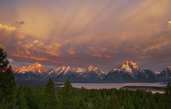 Картинка лес, небо, горы, озеро, утро, США, штат Вайоминг, национальный парк Гранд-Титон