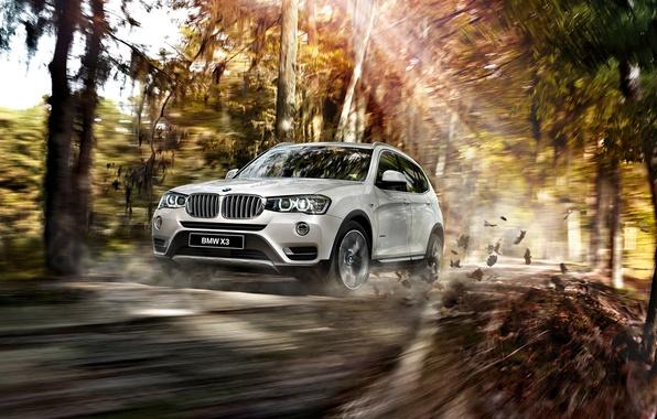 Картинка бмв, BMW, 2015, F25