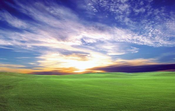 Картинка поле, небо, солнце, закат