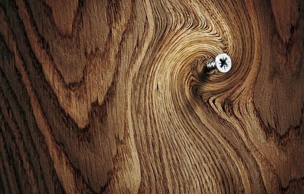Картинка макро, поверхность, фон, дерево, доска, древесина, резьба, шуруп