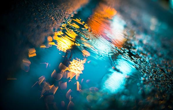 Картинка мокро, асфальт, капли, макро, свет, ночь, дождь, лужи