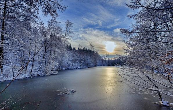 Картинка зима, деревья, река, Германия, Germany, Баден-Вюртемберг, Baden-Württemberg, река Швиппе, River Schwippe
