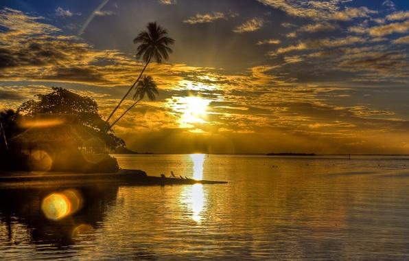 Картинка море, солнце, облака, пейзаж, закат, блики, пальмы, берег, вечер, бунгало