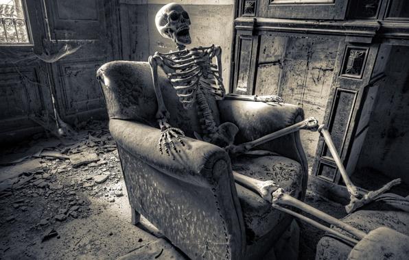 Картинка фон, кресло, скелет