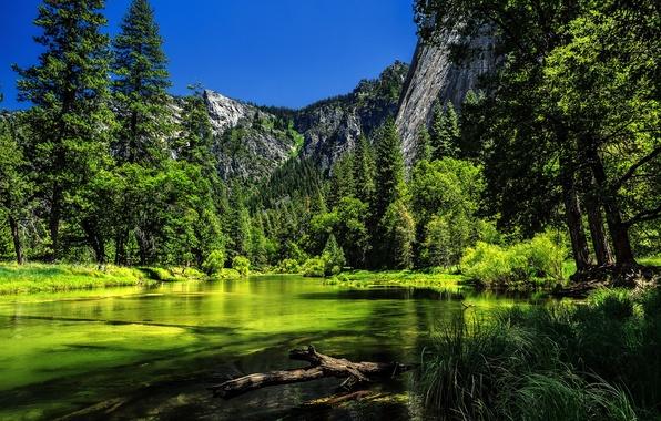 Картинка деревья, горы, река, Калифорния, Йосемити, California, Yosemite National Park, Сьерра-Невада, река Мерсед, Sierra Nevada, Merced …