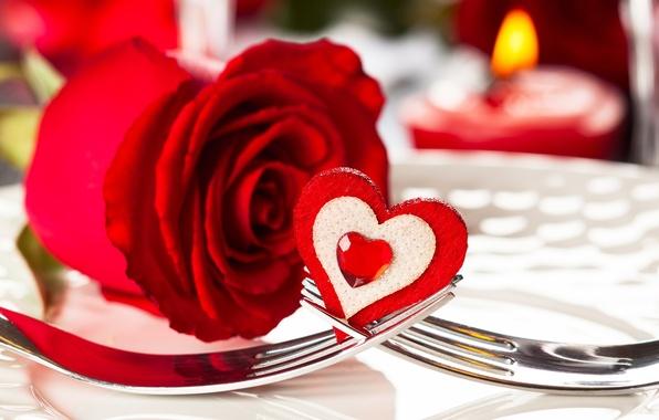 Картинка романтика, сердце, роза, красная, heart, romantic, Valentine`s day, день Святого Валентина