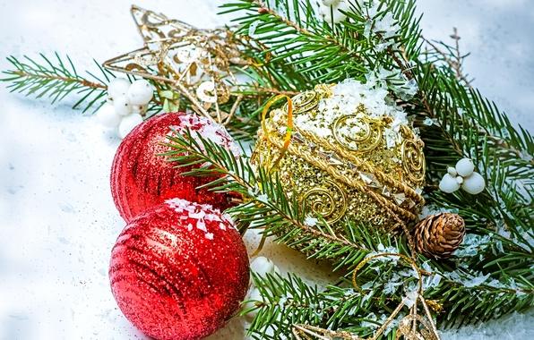 Картинка звезды, шарики, шары, игрушки, ель, ветка, Новый Год, Рождество, красные, шишка, Christmas, золотые, New Year, …