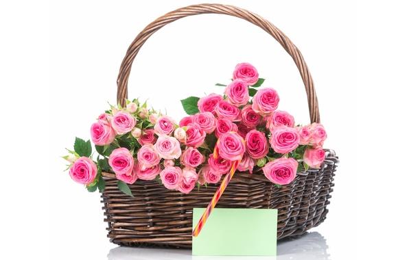 Картинка корзина, розы, букет, pink, flowers, roses, basket