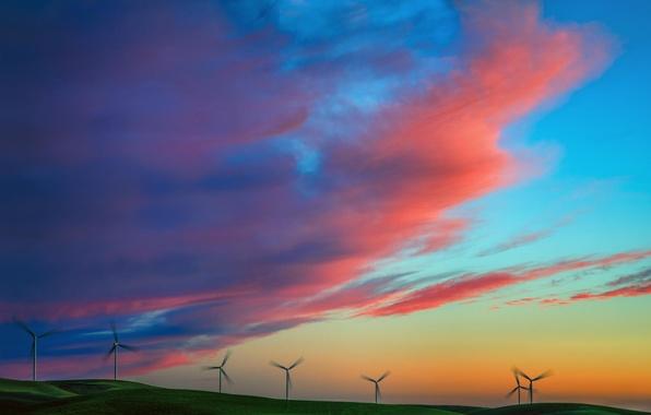 Картинка поле, лето, небо, закат, природа, ветряки