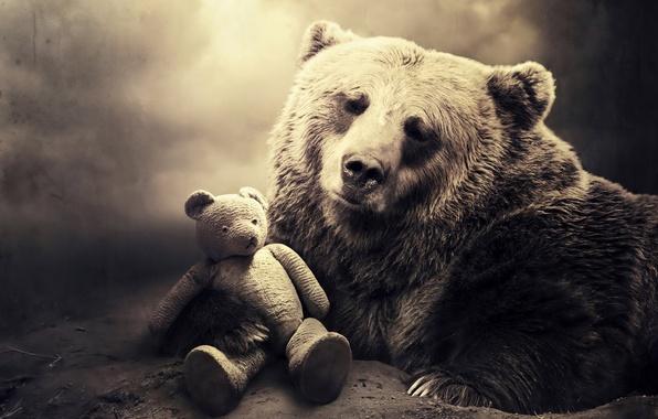 Картинка грусть, взгляд, ветки, земля, игрушка, медведь