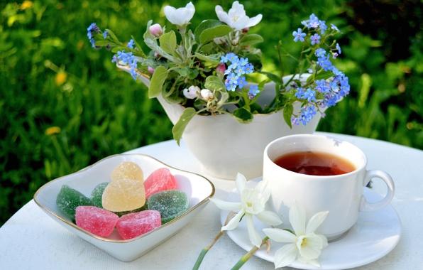 Картинка цветы, чай, букет, яблоня, незабудки, нарцисс, мармелад