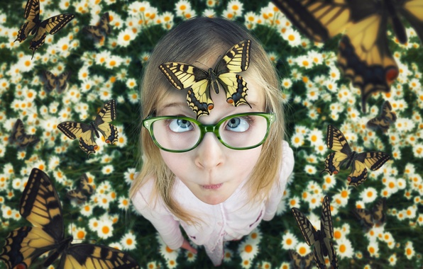 Картинка лето, бабочки, ромашки, девочка, A touch of summer