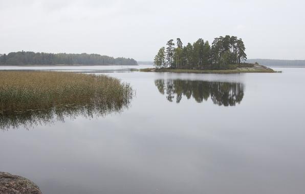 Картинка природа, озеро, фото, остров, Россия, monrepo, монрепо