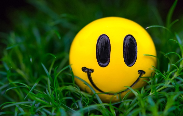 Картинка трава, макро, улыбка, смайлик