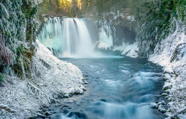 Картинка зима, лес, снег, природа, река, водопад, утро