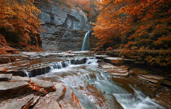 Картинка осень, лес, деревья, скала, река, водопад