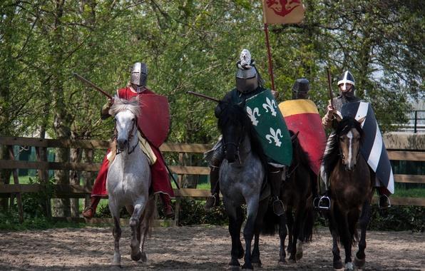 Картинка кони, доспехи, лошади, воины, рыцари