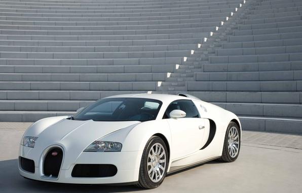 Картинка белый, ступени, суперкар, Bugatti Veyron, бетон, гиперкар