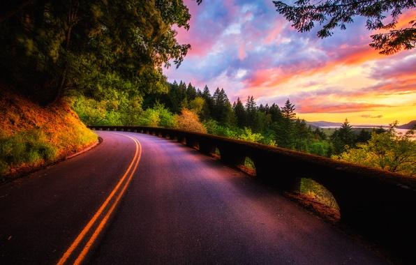 Картинка дорога, лес, небо, облака, деревья, пейзаж, закат, природа, вид, цвет, colors, forest, road, sky, trees, …