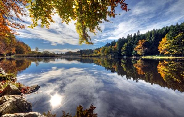 Картинка осень, листья, вода, деревья, ветки, озеро, отражение, камни, берег, Германия, Deininger Weiher