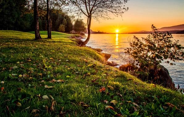 Картинка небо, трава, закат, природа, озеро, дерево, берег, Nature, Sky, Tree, Water, Sunset, Lake, бода