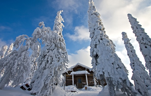 Картинка зима, снег, природа, ели, сугробы, домик, финляндия