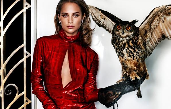 Картинка поза, сова, птица, модель, макияж, платье, актриса, прическа, шатенка, стоит, в красном, перчатка, Vanity Fair, …