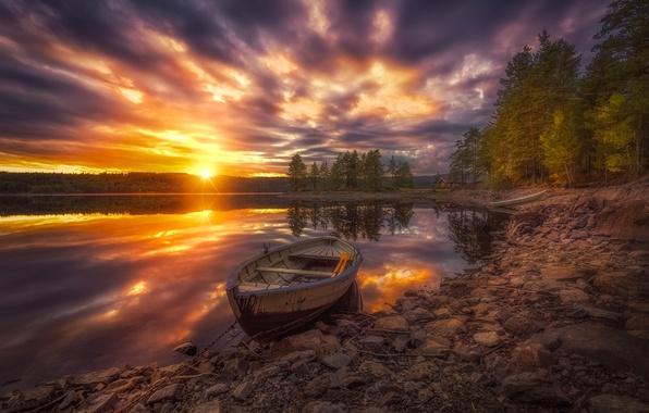 Картинка деревья, закат, озеро, лодка, Норвегия, Norway, Рингерике, Ringerike