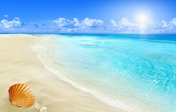 Картинка beach, sea, sun, sand, seashell