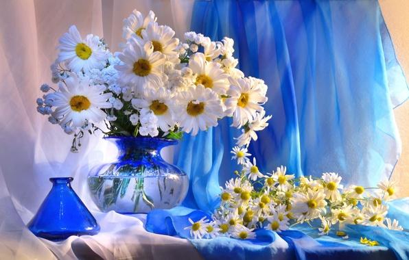 Картинка цветы, ромашки, ваза, натюрморт