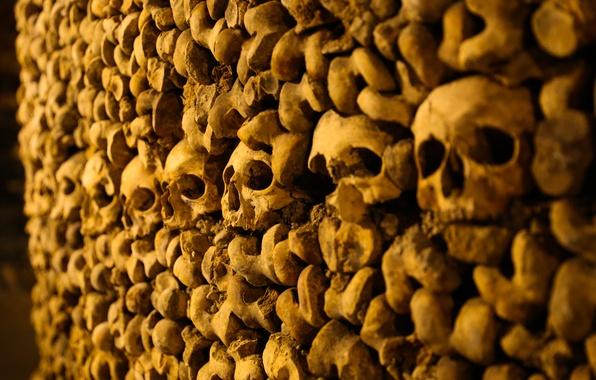 Картинка Париж, кости, черепа, Катакомбы