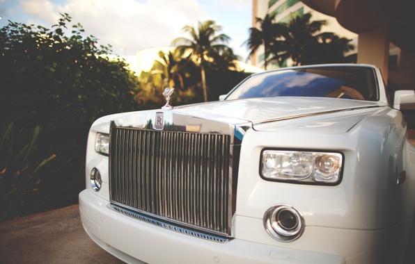Картинка car, пальмы, rolls royce, white, передок, phantom, luxury, exotic