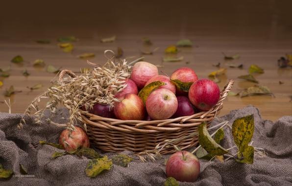 Фото обои корзина, колосья, яблоки