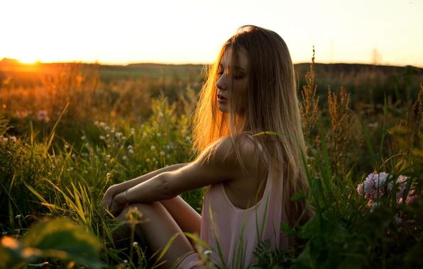 Картинка поле, трава, девушка, закат, цветы, наслаждение, милая, портрет, горизонт, relax, summer, шатенка, красивая, прелесть, nature, …