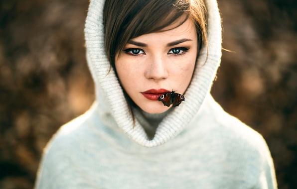 Красивые картинки на рабочий стол с бабочкой