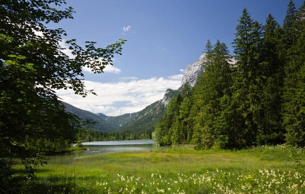 Картинка лето, горы, озеро, Германия, Альпы